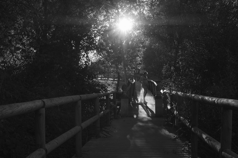 reportaje de embarazo en la naturaleza parque de doñana sevilla